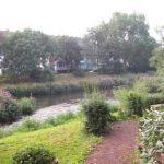 Ökologische Gartengestaltung
